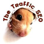 the traffic seo stroud gloucestershire 150x150 - The Traffic SEO In Stroud