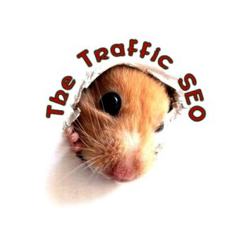 The Traffic SEO contact page - Hinton SEO & WordPress agency in Gloucestershire